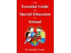 The Essential Guide To Special Education In Ireland