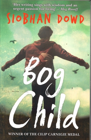 Bog Child - Siobhan Dowd