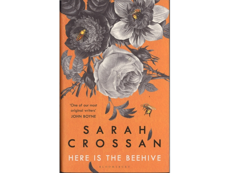 Sarah Crossan - Here Is The Beehive