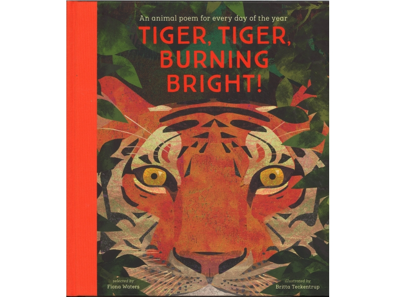Tiger , Tiger , Burning Bright - Fiona Waters & Britta Teckentrup