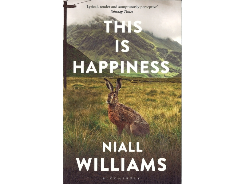 Niall Williams - This Is Happiness