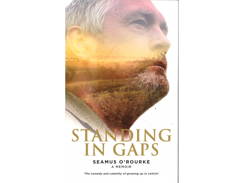 Seamus O'Rourke - Standing In Gaps