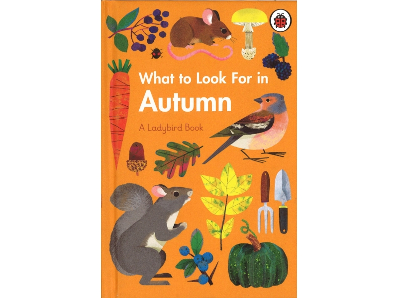 What To Look For In Autumn