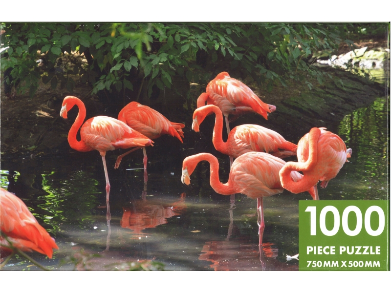 Flamboyance Of Flamingos - 1000 Piece Jigsaw