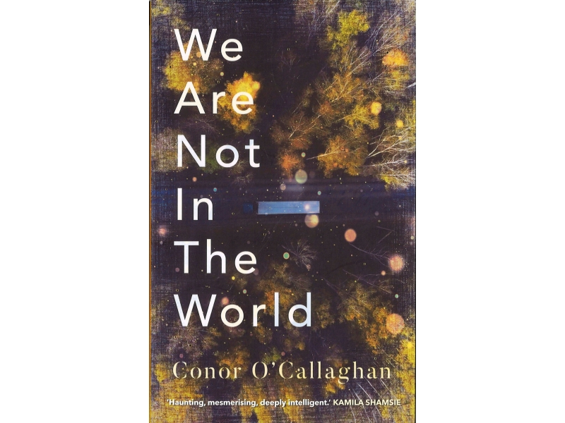 Conor O' Callaghan - We Are Not In The World