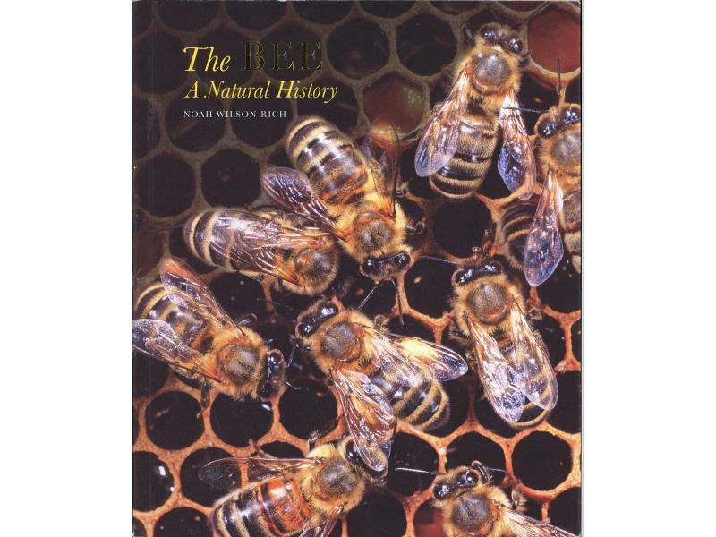 Noah Wilson-Rich - The Bee A Natural History