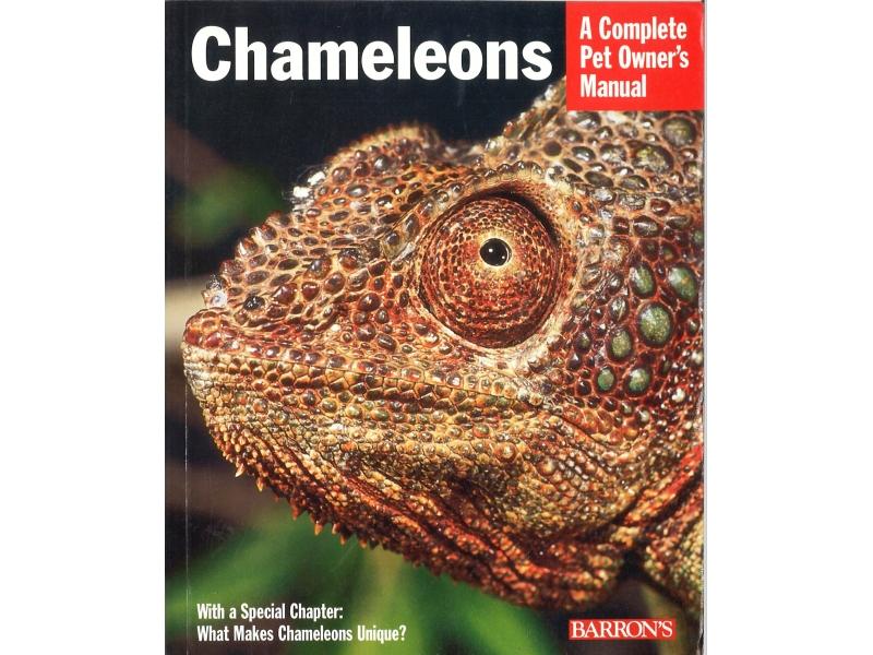 Barron's - Chameleons