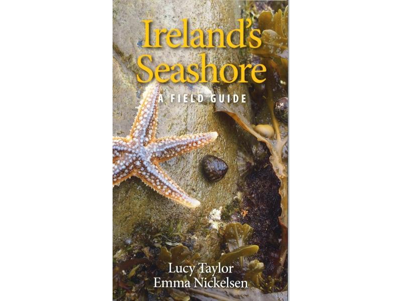 Lucy Taylor - Ireland's Seashore