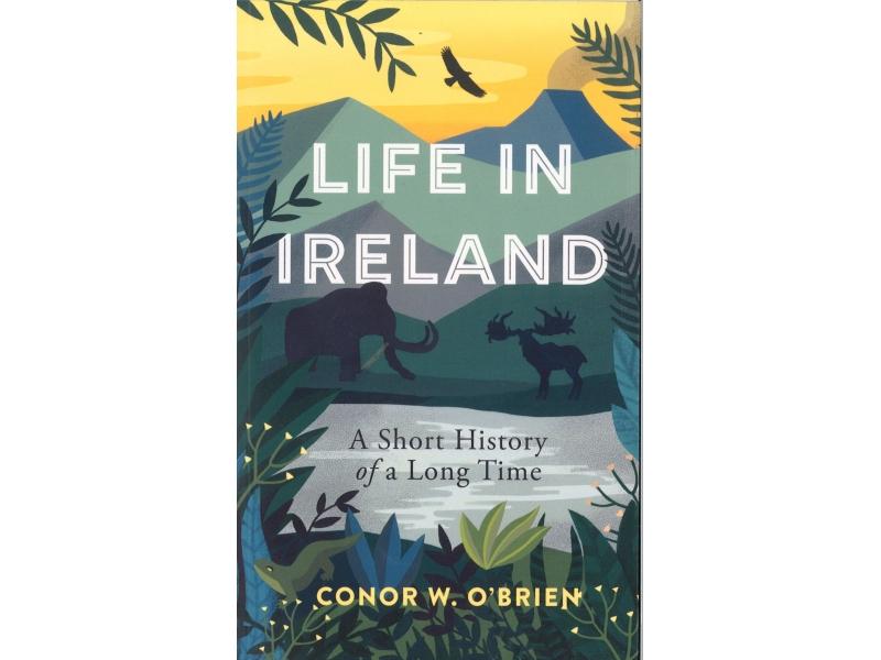 Conor W. O'Brien - Life In Ireland