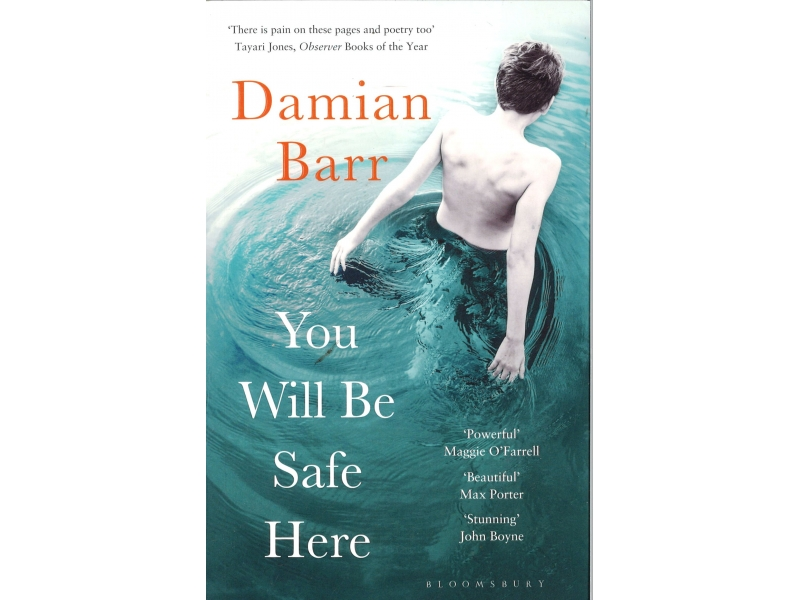 Damian Barr - You Will Be Safe Here