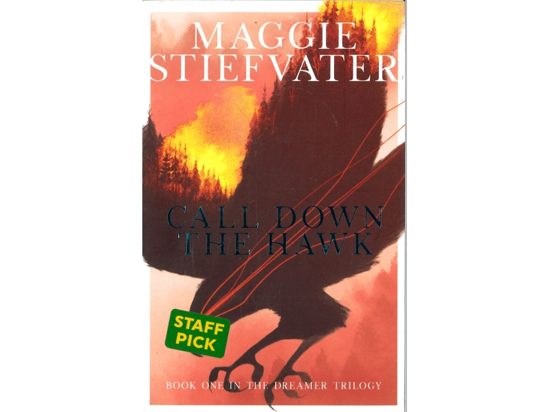 Maggie Stiefvater - Call Down The Hawk