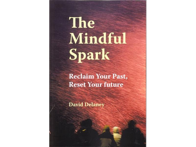 David Delaney - The Mindful Spark