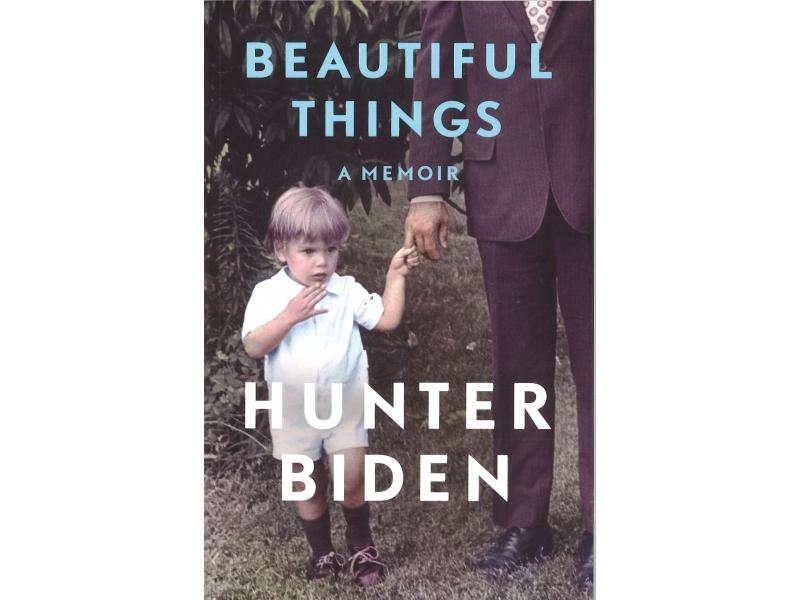 Hunter Biden - Beautiful Things