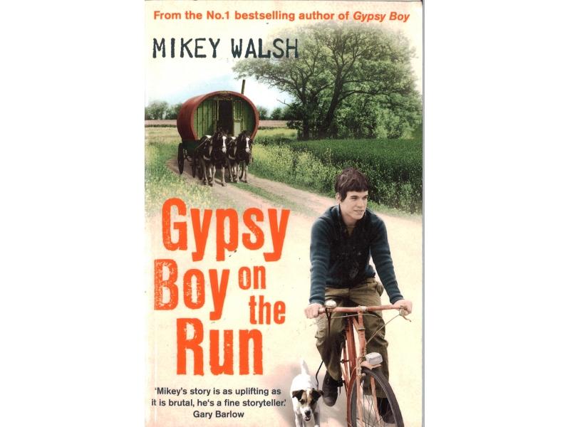 Mikey Walsh - Gypsy Boy On The Run