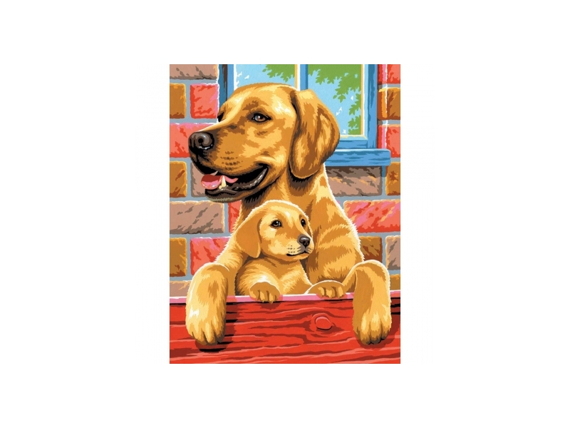 Painting By Numbers Twin Dogs