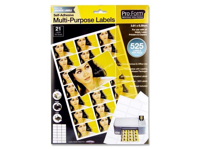 Computer Labels 21 Per Sheet 63.5mmx38.2mm - 525 Per Pack